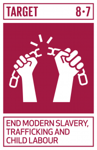 GTI リスト ( GTI List )-SDGs強制労働を根絶し、現代の奴隷制、人身売買を終らせるための緊急かつ効果的な措置の実施、最悪な形態の児童労働の禁止及び撲滅を確保する。2025年までに児童兵士の募集と使用を含むあらゆる形態の児童労働を撲滅する。