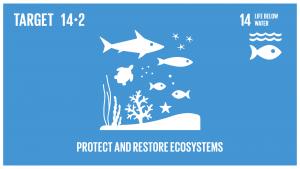 GTI リスト ( GTI List )-SDGs2020年までに、海洋及び沿岸の生態系に関する重大な悪影響を回避するため、強靱性(レジリエンス)の強化などによる持続的な管理と保護を行い、健全で生産的な海洋を実現するため、海洋及び沿岸の生態系の回復のための取組を行う。