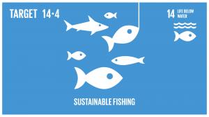 GTI リスト ( GTI List )-SDGs水産資源を、実現可能な最短期間で少なくとも各資源の生物学的特性によって定められる最大持続生産量のレベルまで回復させるため、2020年までに、漁獲を効果的に規制し、過剰漁業や違法・無報告・無規制(IUU)漁業及び破壊的な漁業慣行を終了し、科学的な管理計画を実施する。