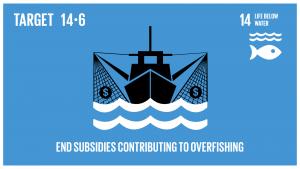 GTI リスト ( GTI List )-SDGs開発途上国及び後発開発途上国に対する適切かつ効果的な、特別かつ異なる待遇が、世界貿易機関(WTO)漁業補助金交渉の不可分の要素であるべきことを認識した上で、2020年までに、過剰漁獲能力や過剰漁獲につながる漁業補助金を禁止し、違法・無報告・無規制(IUU)漁業につながる補助金を撤廃し、同様の新たな補助金の導入を抑制する。