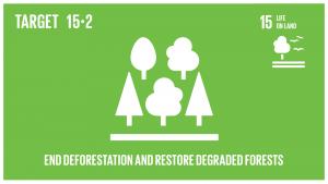 GTI リスト ( GTI List )-SDGs2020年までに、あらゆる種類の森林の持続可能な経営の実施を促進し、森林減少を阻止し、劣化した森林を回復し、世界全体で新規植林及び再植林を大幅に増加させる。