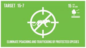 GTI リスト ( GTI List )-SDGs保護の対象となっている動植物種の密猟及び違法取引を撲滅するための緊急対策を講じるとともに、違法な野生生物製品の需要と供給の両面に対処する。