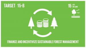 GTI リスト ( GTI List )-SDGs保全や再植林を含む持続可能な森林経営を推進するため、あらゆるレベルのあらゆる供給源から、持続可能な森林経営のための資金の調達と開発途上国への十分なインセンティブ付与のための相当量の資源を動員する。