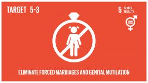 GTI リスト ( GTI List )-SDGs未成年者の結婚、早期結婚、強制結婚及び女性器切除など、あらゆる有害な慣行を撤廃する。